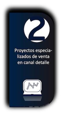 Proyectos especializados de venta en canal detalle