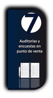 Auditorias y encuestas en punto de venta